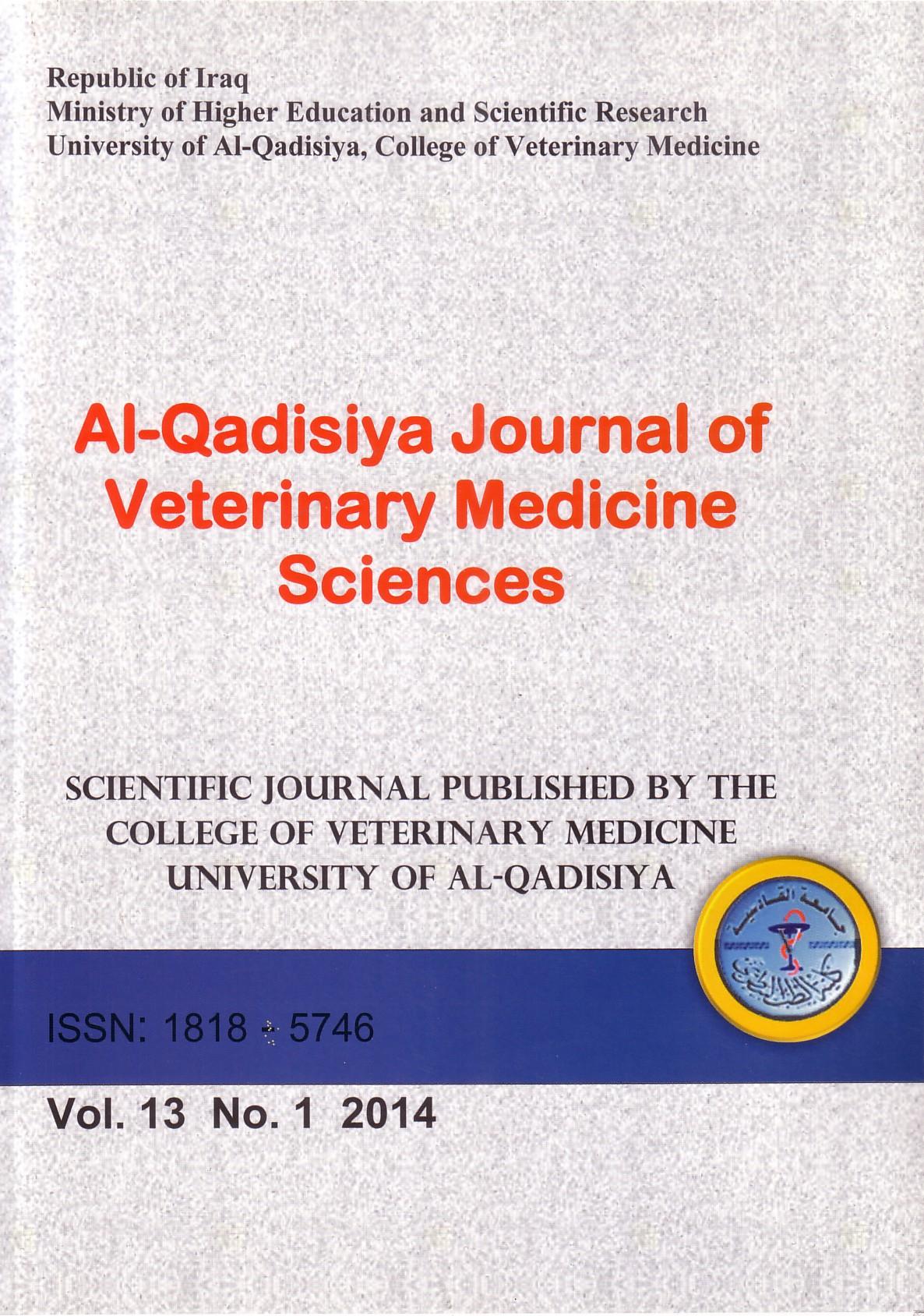File Al Qadisiyah College Jordan